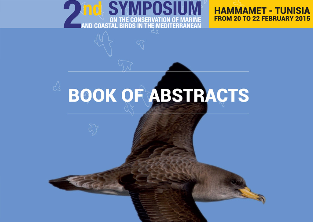 Book of abstracts of the second brids symposium