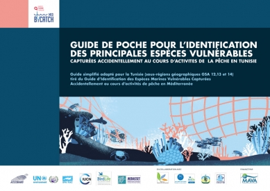 medbycatch_pocket_guide_tn_fr-1.jpg