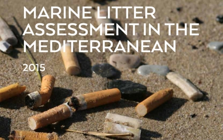 Marine Litter Assessment in the Mediterranean